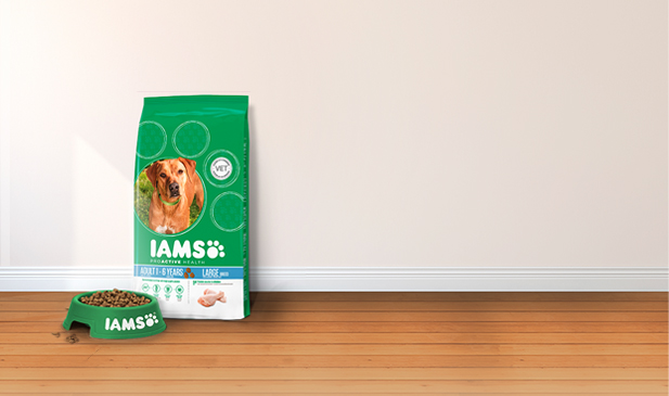 Iams® ProActive Health Adult für grosse Rassen